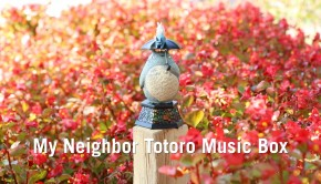 My Neighbor Totoro Music Box from ThinkGeek