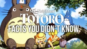 10 Facts you didnt know about my Neighbor Totoro