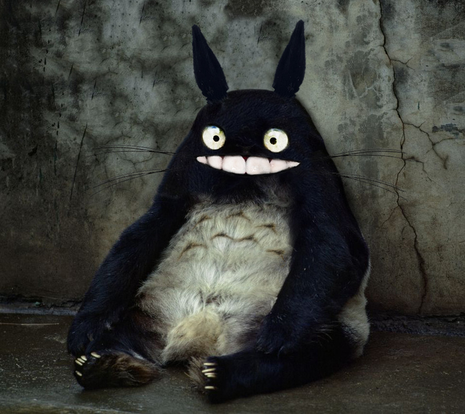 03 - Totoro in Real Life