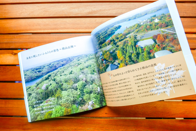 the-place-where-totoro-was-born-studio-ghibli-my-neighbor-totoro-picture-book-japanese-anime-akemi-ota-hayao-miyazaki_-311